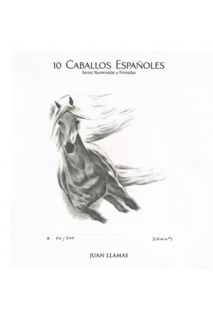 COLECCIÓN 10 LAMINAS DE JUAN LLAMAS