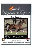 Grandes Yeguadas de España. Marques de Villarreal