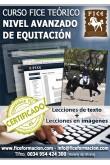 Curso FICE Teórico Nivel Avanzado (Online)