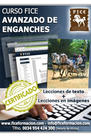 Material Docente. Curso FICE de Enganches