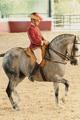High Horseriding School