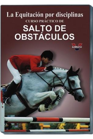 Salto de Obstáculos I