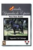 Grandes Yeguadas de España. Cid Calonge