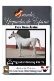 Grandes Yeguadas de España. Domecq Ybarra