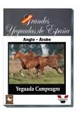 Grandes Yeguadas de España. Campeagro